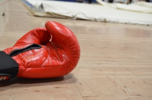 Boxing glove, Photo by Meagan Doll